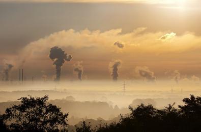 Zawiść kompleksowo zabrała się za niską emisję