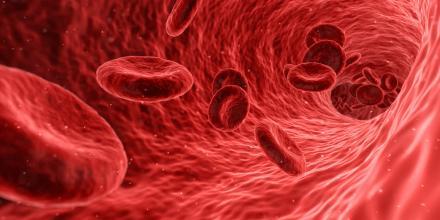 Akcja krwiodawstwa w Orzeszu